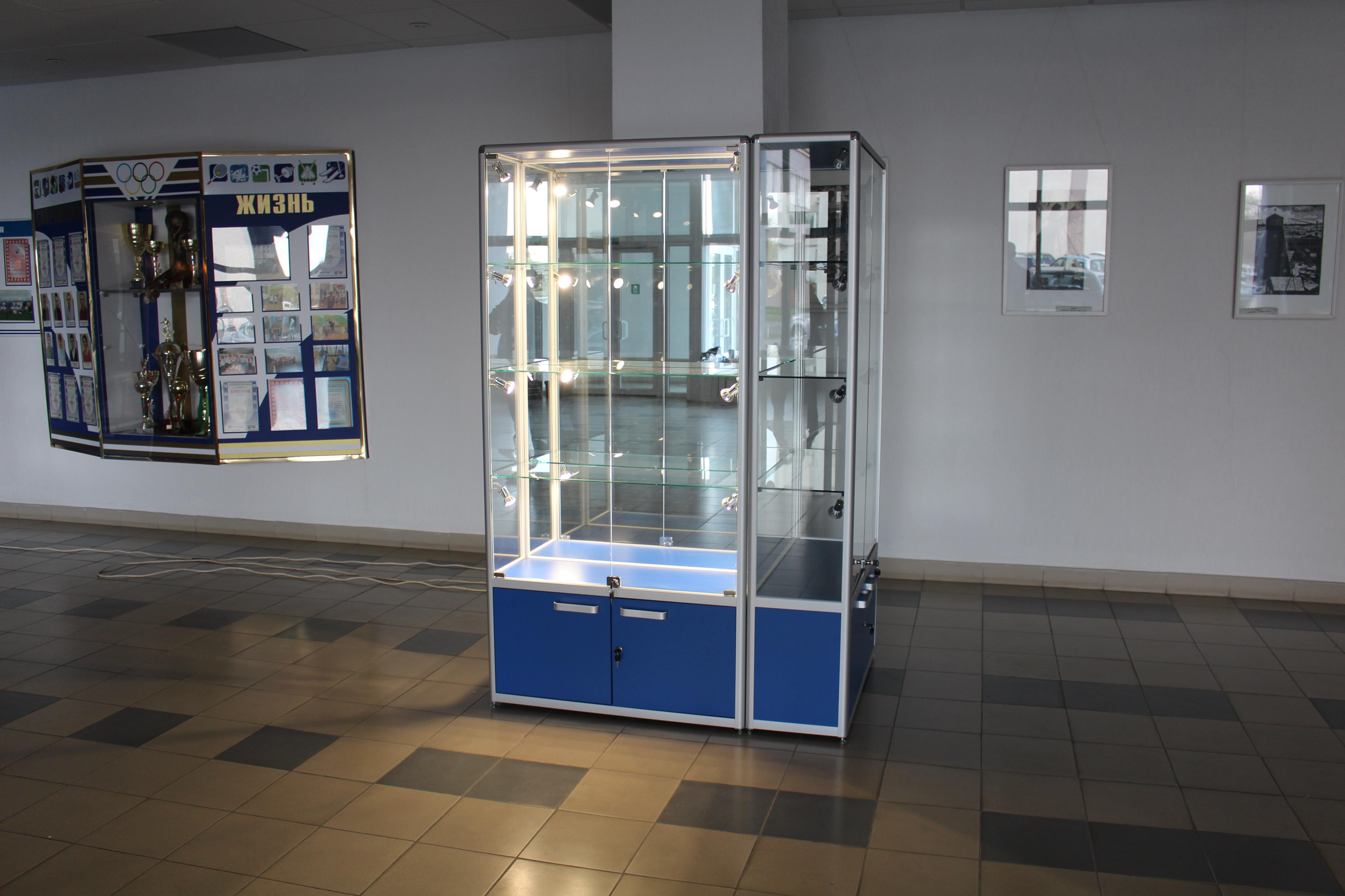 выставочные витрины для библиотеки фото внешний вид